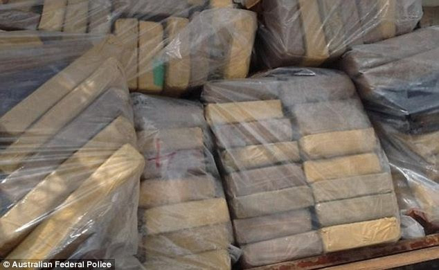 Drugs haul: More than 200 one-kilo blocks of cocaine were discovered on board the ship worth £80m
