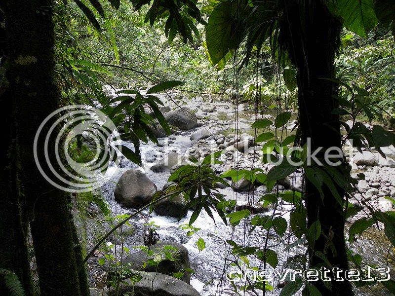 http://i1252.photobucket.com/albums/hh578/chevrette13/Guadeloupe/DSCN6550Copier_zps94111c26.jpg