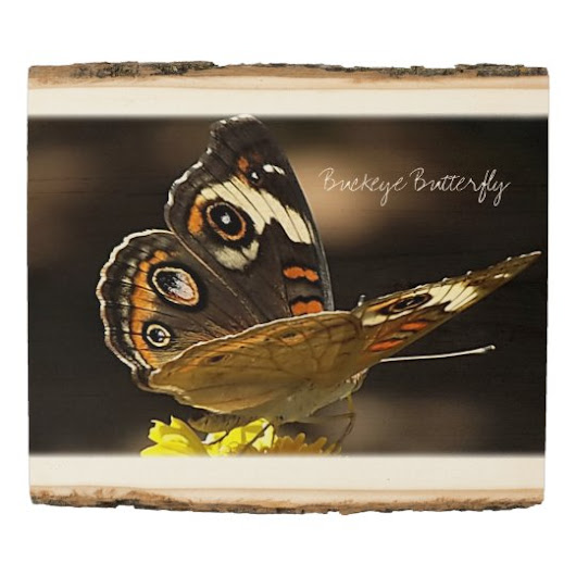 Buckeye Butterfly on a Yellow Flower with Text Wood Panel