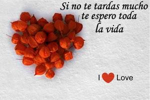 Imagenes De Amor Con Frases Las Mejores Imagenes De Amor Con Frases