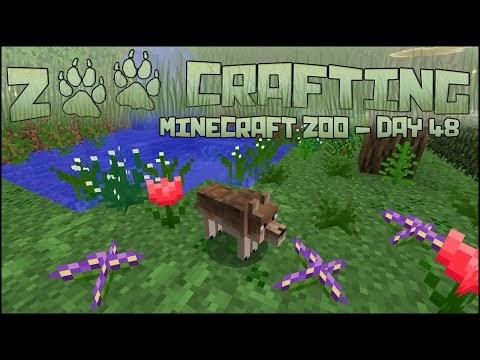 minecraft mod 1.12 2 zoo & wild animals