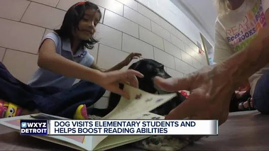 Visits by therapy dogs help metro Detroit kids improve their reading skills