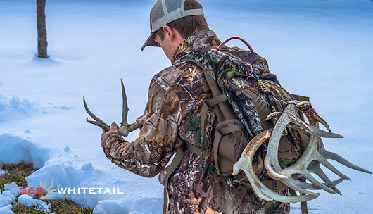 Shed Tote: Conveniently Carry Shed Antlers #ShedRally | 365 Whitetail