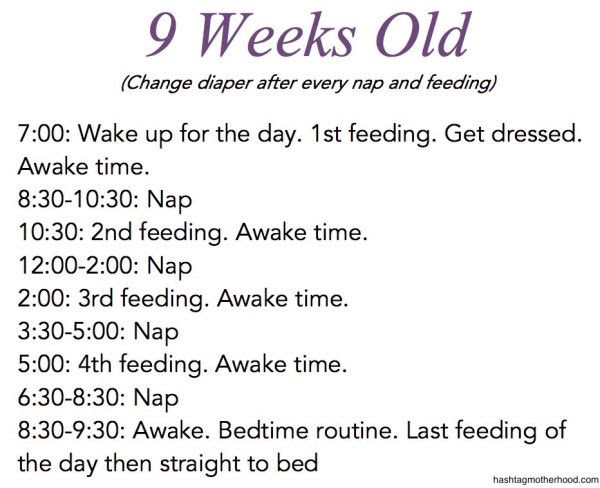 Daily Schedule 8 Week Old Baby