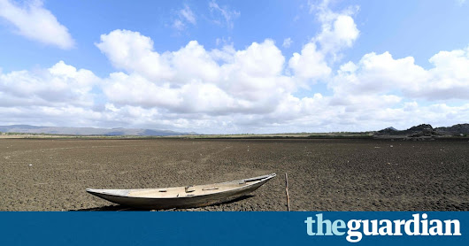 Record-breaking climate change pushes world into 'uncharted territory' | Environment | The Guardian