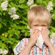 Welcome spring and still survive your allergies