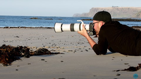 How Does the Sony FE 200-600mm f/5.6-6.3 G OSS Compare to the Canon RF 100-500mm f/4.5-7.1L IS USM?