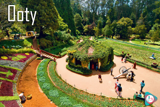 5 most comfortable and peaceful homestays in Ooty