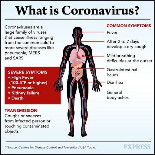 """Résultat de recherche d'images pour """"Symptômes du coronavirus"""""""