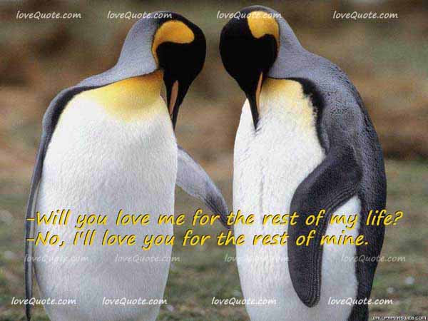cute quotes and sayings about love and life. Short famous quotes about love
