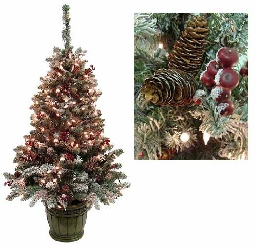 5' Pre-Lit Frosted Hawthorne Fir Potted Artificial ...