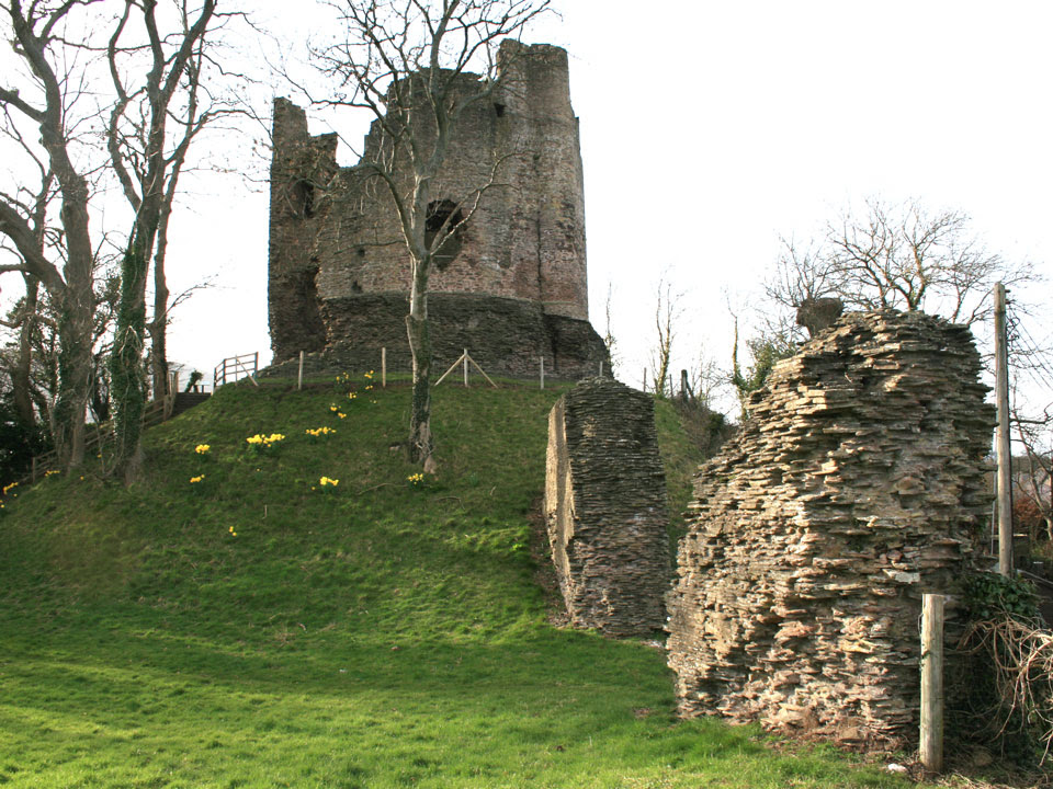 Image result for Longtown castle