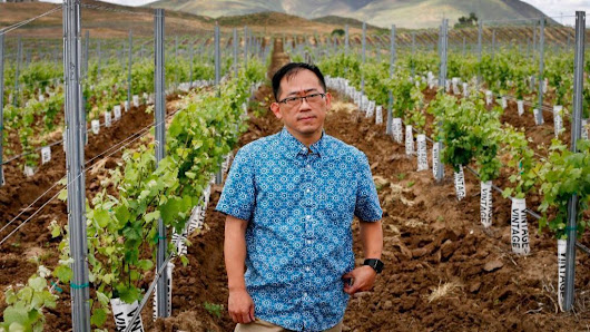 Here's why Chinese money is pouring into Temecula's wine region