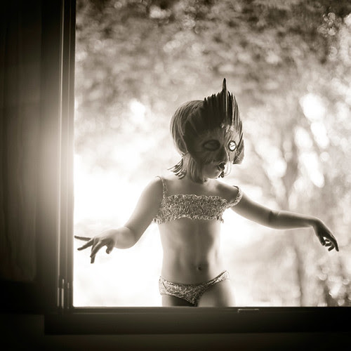 pajarito sobre mi ventana por byfer / Fernando Ocaña