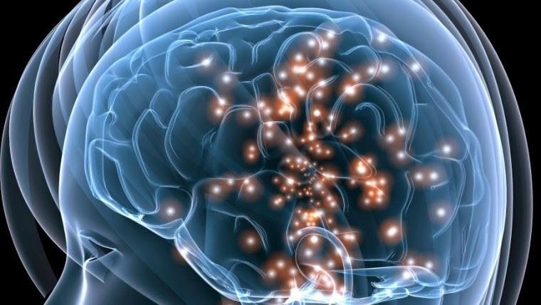 Esta investigación podría conducir al desarrollo de medicamentos que neutralicen o minimicen el deterioro de las neuronas.