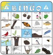 Nature Bingo