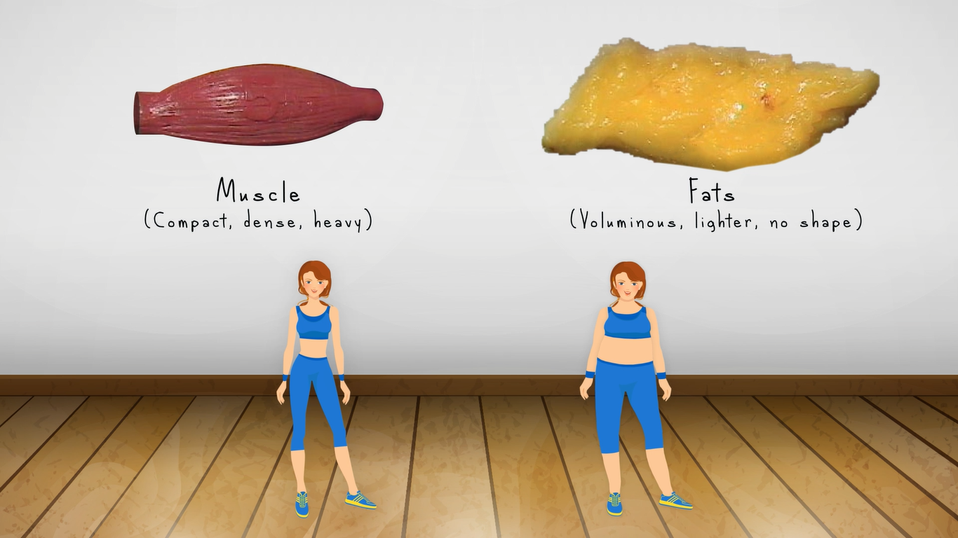 how to lose body fat percentage at home