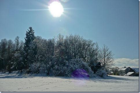 02 sneg