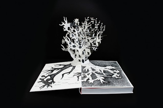 Het Zilte Westen Pop Up Book