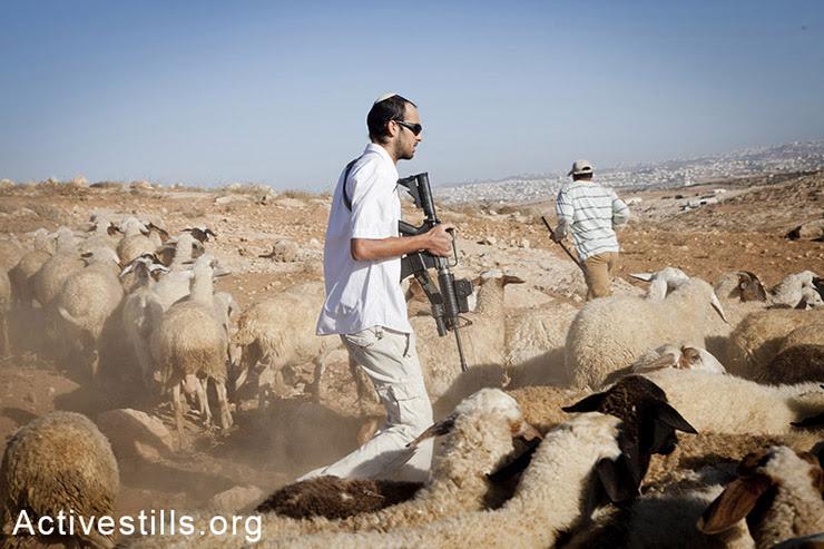 South Hebron Hills, West Bank, 18.9.2012