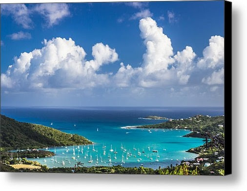 "Sherry Talbot sold a 24.00"" x 16.00"" print on FineArtAmerica.com!"