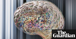 Creative thought has a pattern of its own, brain activity scans reveal | Science | The Guardian