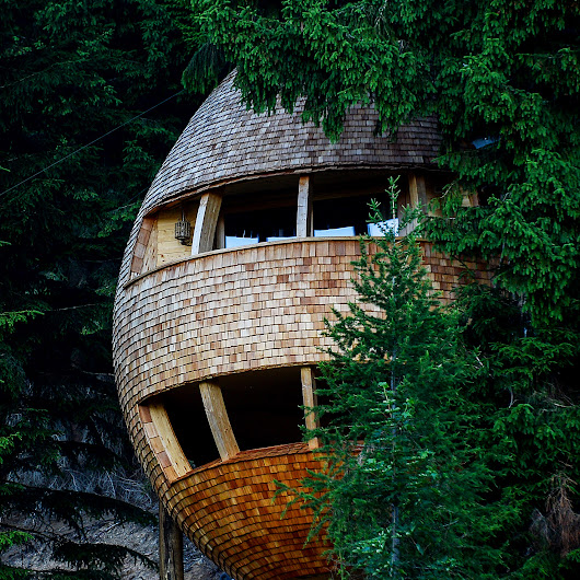 Pinecone-shaped treehouse allows visitors to sleep under the stars