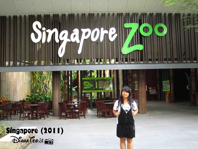 Day 3 Singapore - Zoo Singapore 22