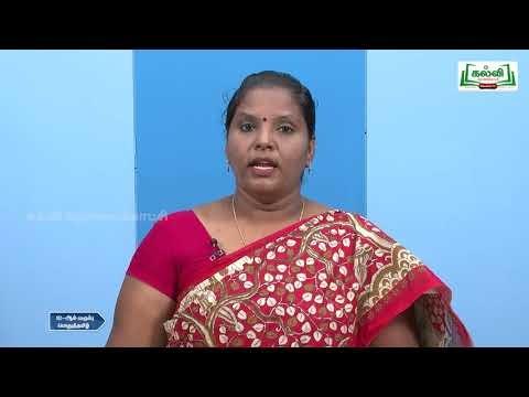 12th Tamil கவிதை பிறகொரு நாள் கோடை - நெடுநல்வாடை Kalvi TV