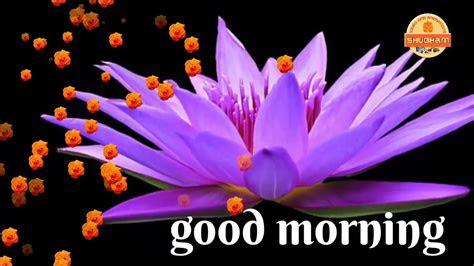 beautifull good morning video songs  whatsapp status