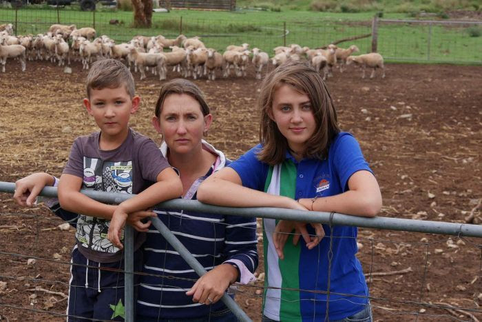 Samara Cassidy with her children Beau and Jordan lean on a gate with sheep in a pen at their property.