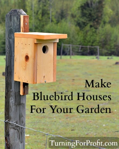 Bluebird house project - Turning for Profit