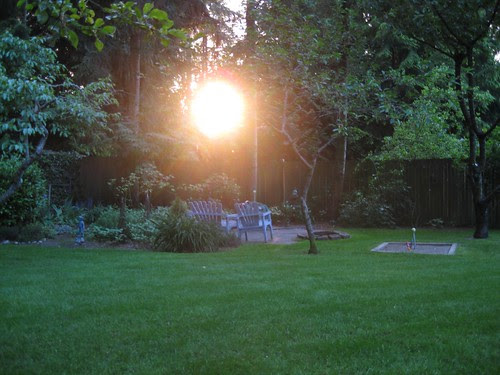 Sunset in the Yard