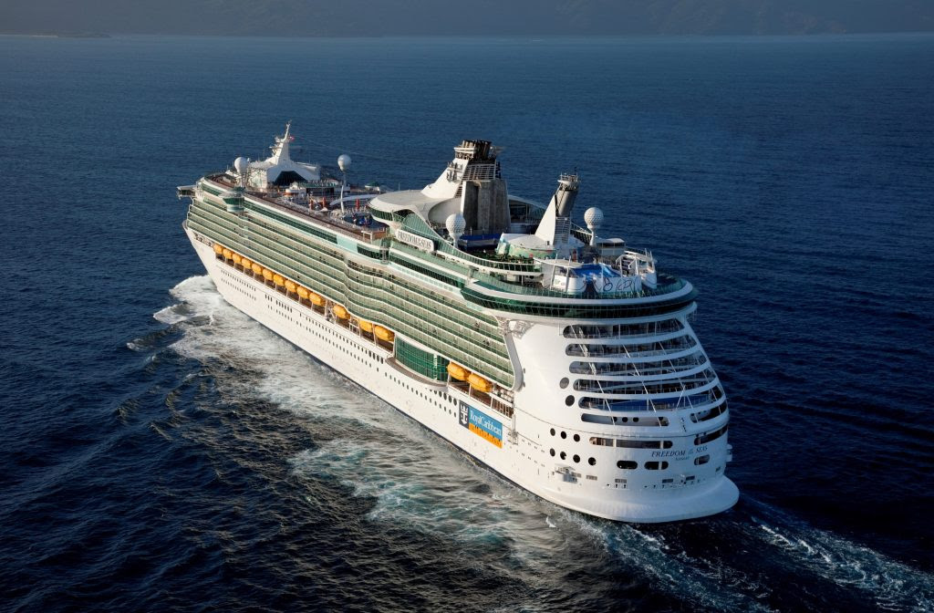 15 Most Expensive Cruise Ships In The World | #12. Freedom of the Seas ($800 million)