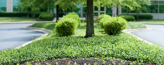 Commercial Landscaping | Howell Brothers Lawn & Landscaping