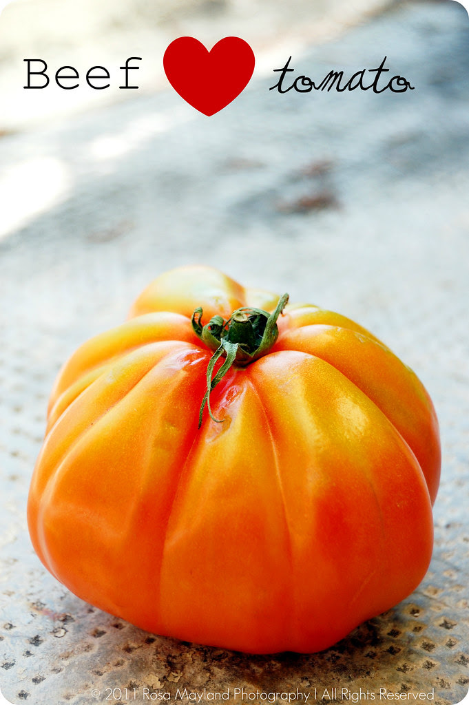 Raw Tomato Sauce Tomato 2 bis bis