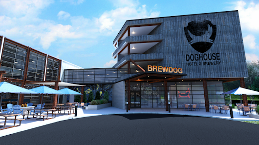 BrewDog brewery to launch on-site craft beer-themed hotel