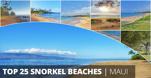 25 Best Maui Snorkeling Spots & Beach Guide | Videos & Photos!