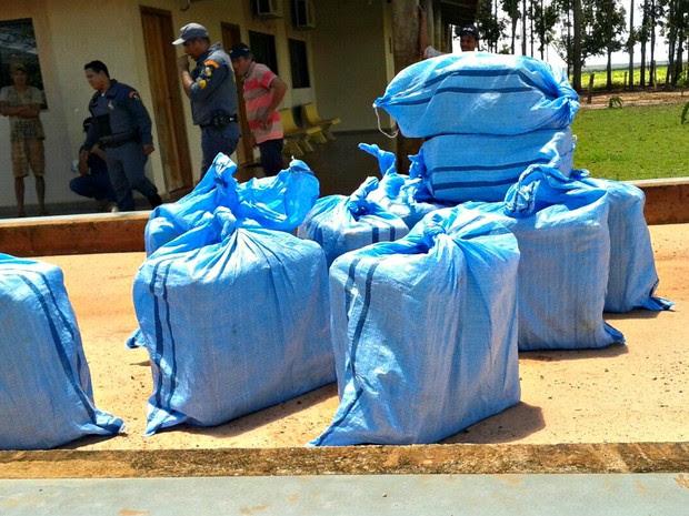 Carregamento de cocaína foi apreendido pela Polícia Militar (Foto: Divulgação/Polícia Civil de Mato Grosso)