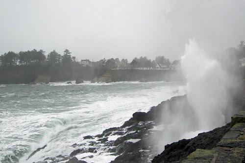 Oregon Coast 27