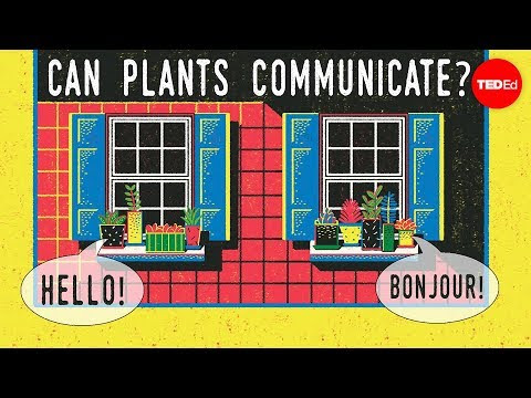Can plants talk to each other? - Richard Karban