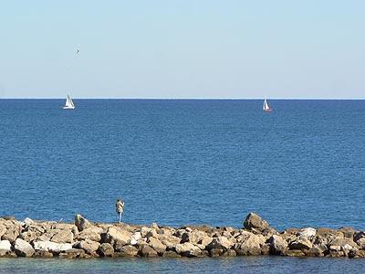 antibes bord de mer.jpg