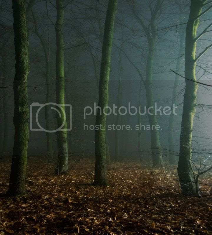photo Dmitry-Bogachuk-5_zps22166708.jpg