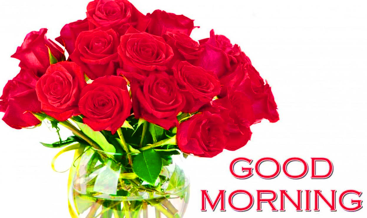 177 Good Morning Flowers Quotes Wishes Images Wallpaper Photos