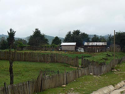 palissades du Chiapas.jpg