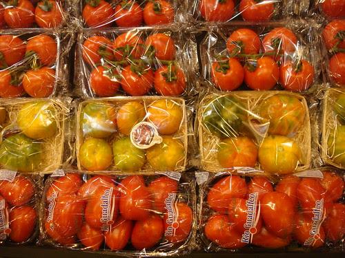 ¿Tomates tipo RAF amarillos? by Grupo THM, tecnologías horticultura mediterránea