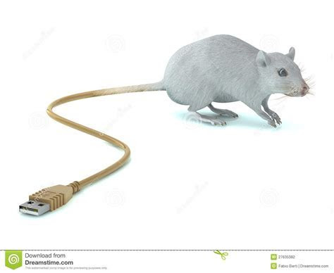 Mouse with USB tail stock illustration. Illustration of tech   27635382