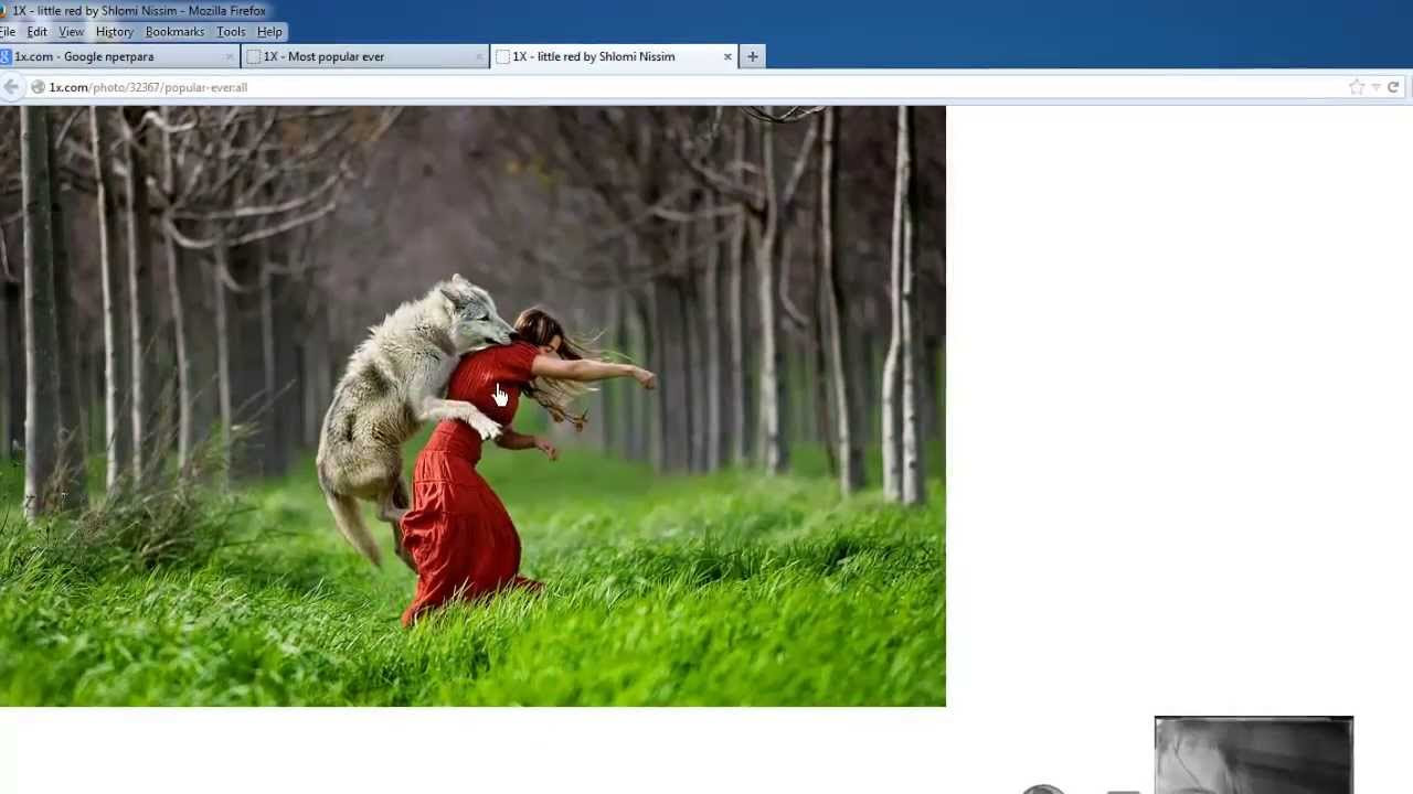 how to get free download manger to work in firefox