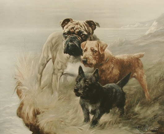 The Scottie's Petticoat and Other 19th Century Dog Tales