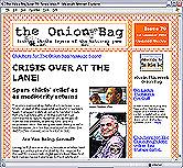 Onion Bag: Self-regarding nonsense